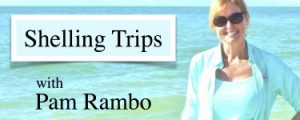 Pams-shelling-trips-375x150