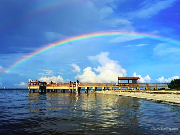 Catching Rainbows From Sanibel Pier