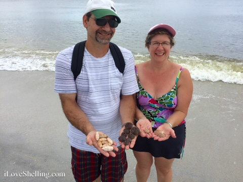 collecting shells and beach treasures