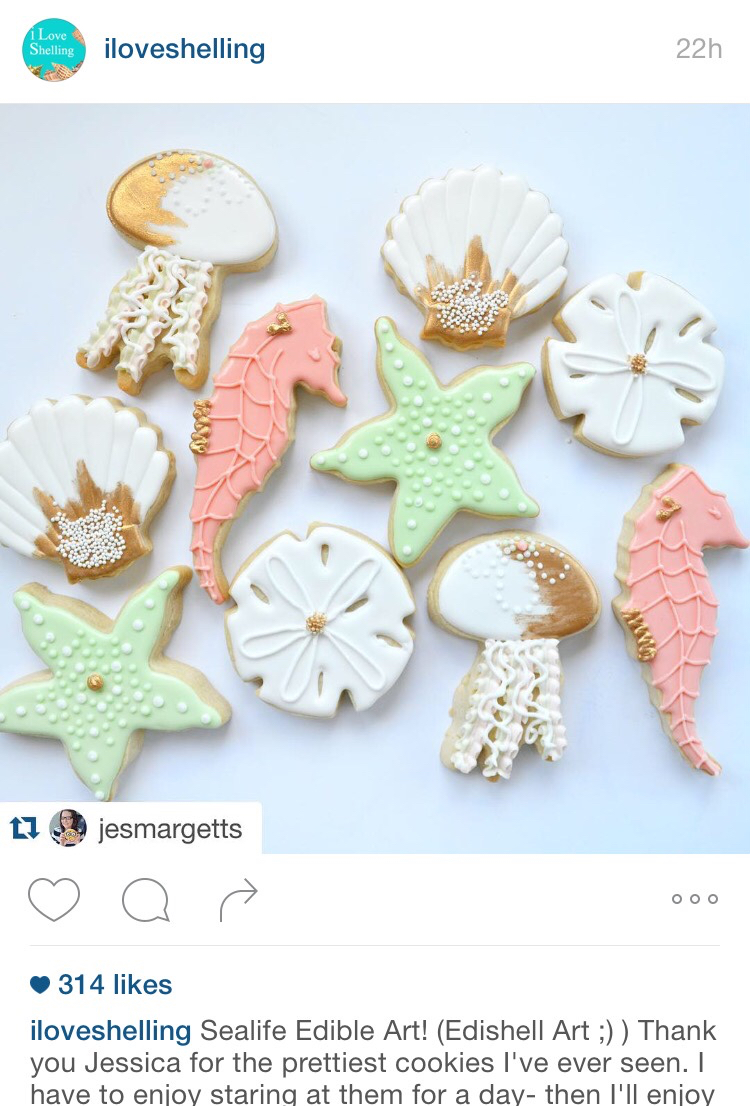seashell and sealife cookies edible art
