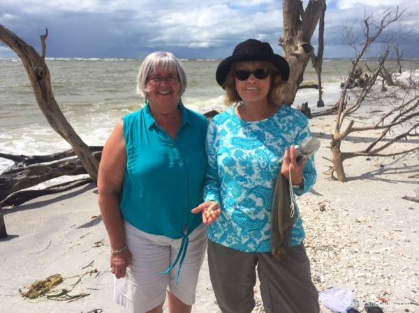 Beach girls finding shells in Florida