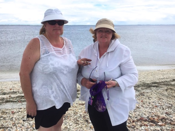 beach combers finding shell loot