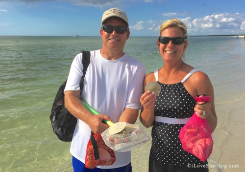 Dave Becky Kansas Sand Dollars from Cayo Costa