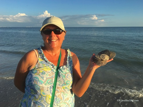 Karen with sand dollars found sanibel