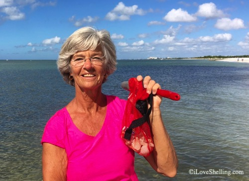 Linda from NY visits sw Florida for seashells