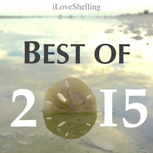 2015 Best Of iLoveShelling