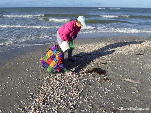 beach combers on Sanibel in winter-1