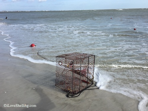 crab traps washed on beach after storm