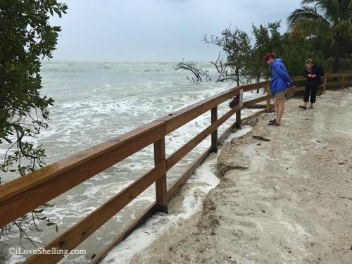erosion sanibel lighthouse road