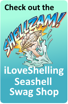 Check out the iLoveShelling Seashell Swag Shop!