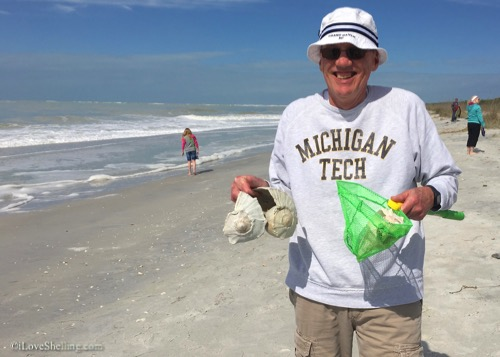 finding big shells on the beach