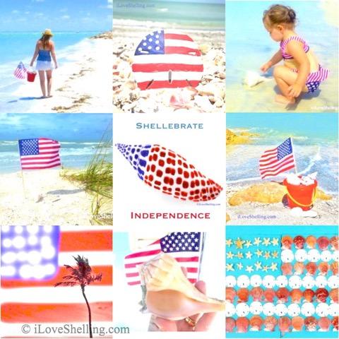 Shellebrate Freedom