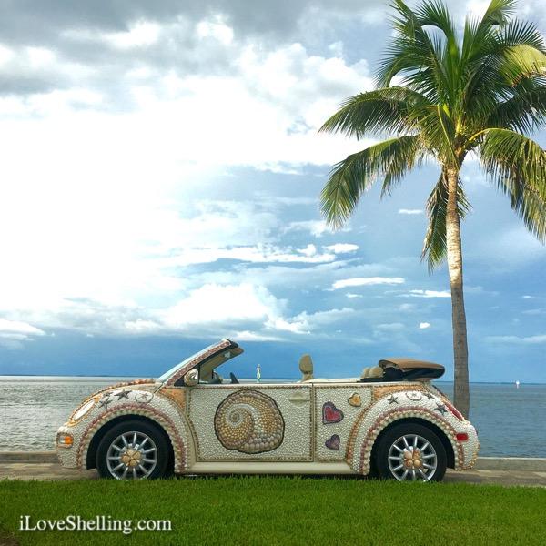 shell love bug vw seashell car