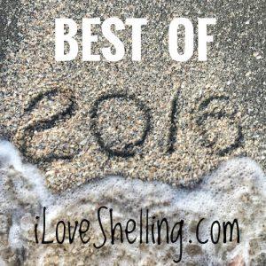 best of 2016 beachcombing