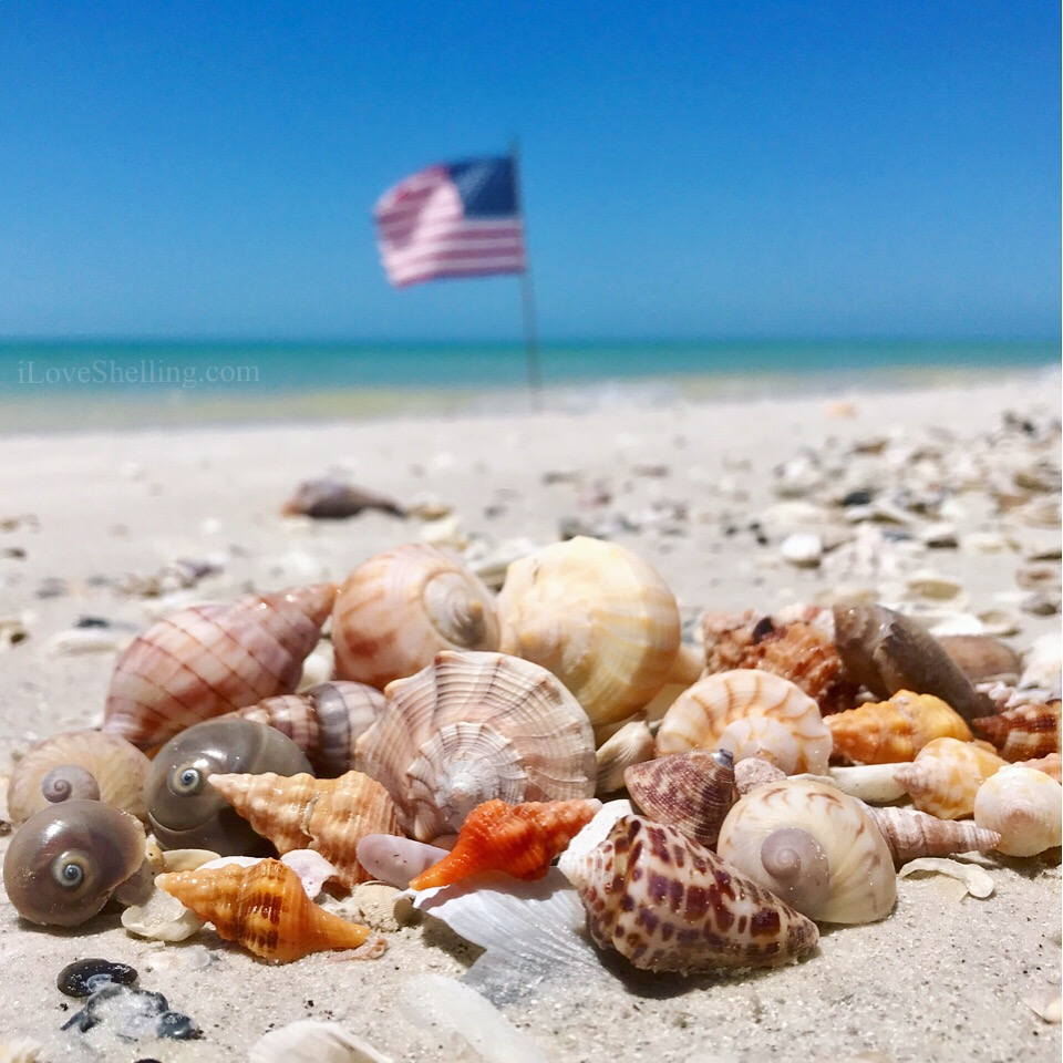 Memorial Day on the Beach