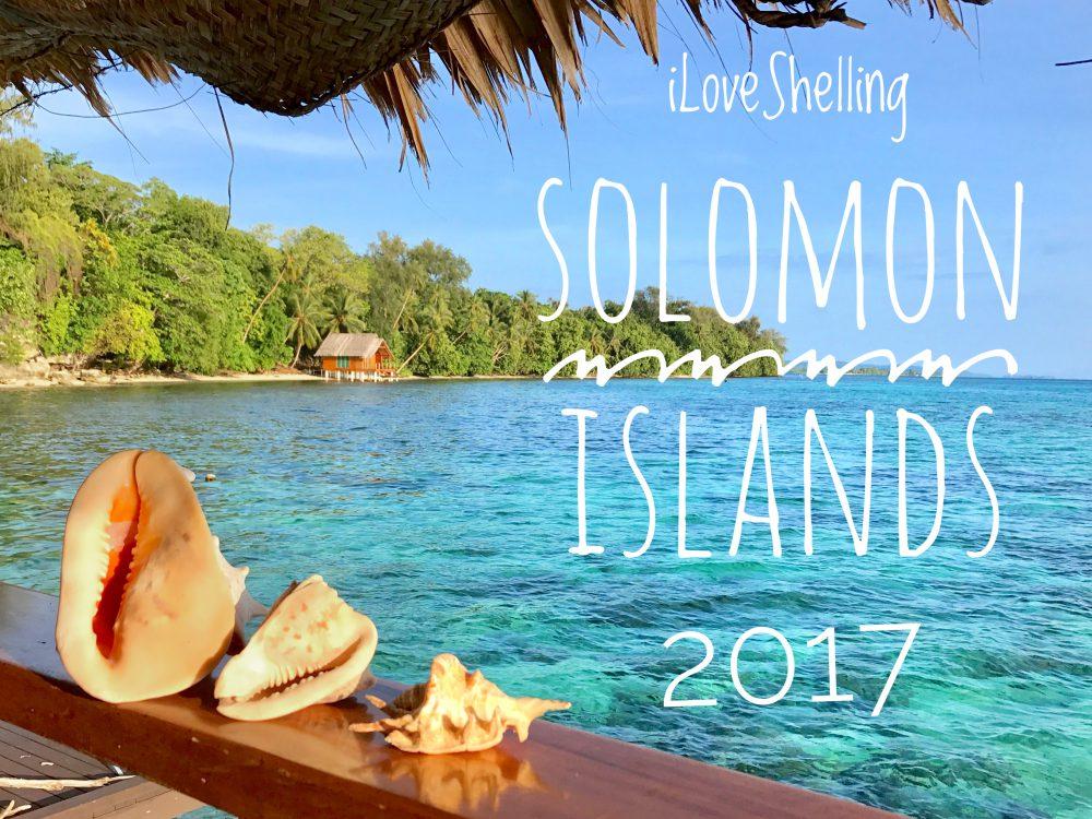 Solomon Islands Life With Shells