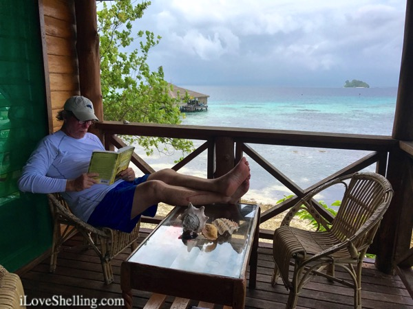 reading neptunes inferno at fatboys resort solomon islands