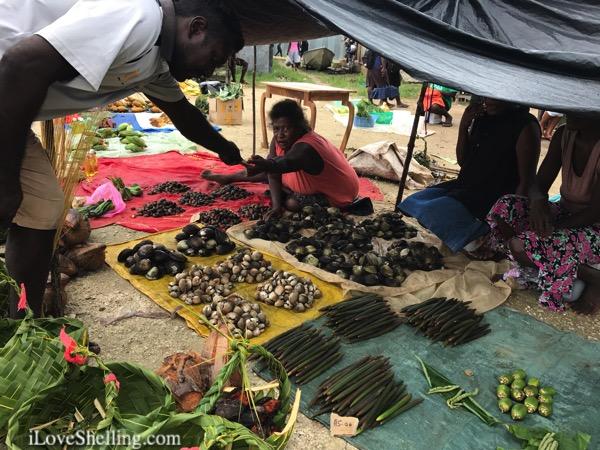 Munda market selling shells