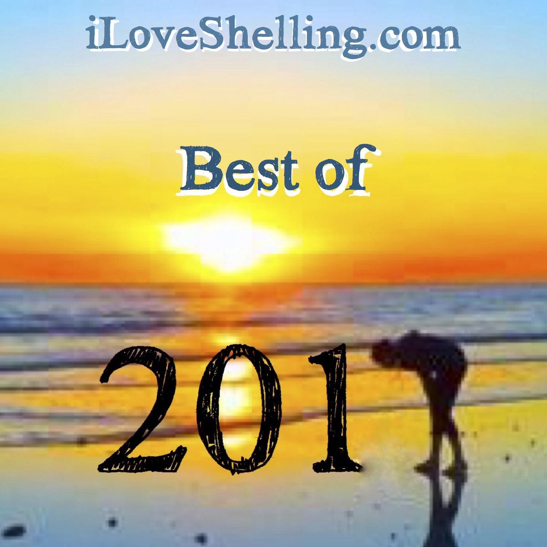 Hasta Shellvista 2017 … Shello 2018 ;)