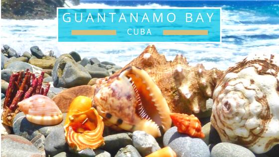 Guantanamo Bay Cuba seashells beach comb