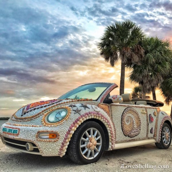 Shell Love Bug petition