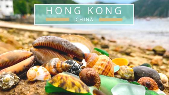 Hong Kong seashells beach combing