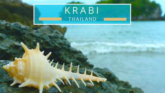 Krabi Thailand seashells beach combing