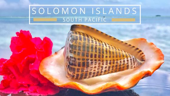 Solomon Islands beachcombing destination to find seashell paradise