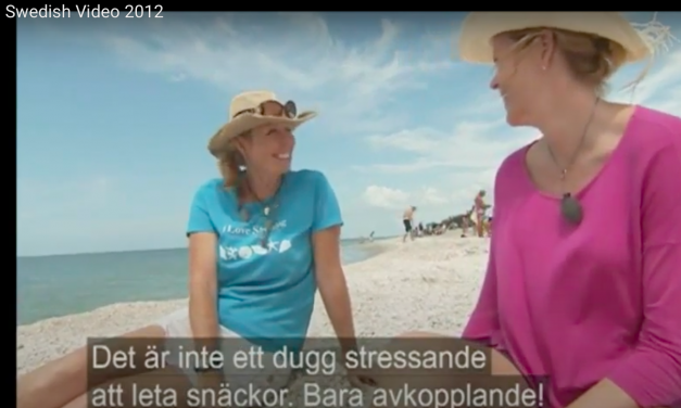 Swedish Television Features i Love Shelling